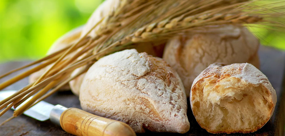 image of wheat and breads